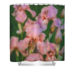 Pink Iris Family Shower Curtain by Omaste Witkowski