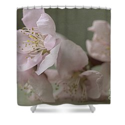 Pink Is The Color Of Happiness Shower Curtain by Linda Lees
