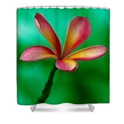 Pink Jasmin Shower Curtain