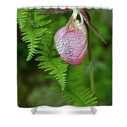 Pink Lady Slipper Shower Curtain