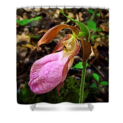 Pink Ladyslipper Orchid Shower Curtain