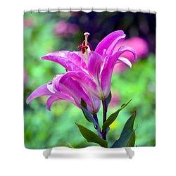 Pink Lilies Shower Curtain by Deena Stoddard