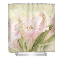 Pink Lilies Shower Curtain by Linda Blair