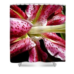Pink Lily Macro Shower Curtain