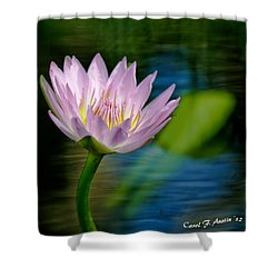 Purple Petals Lotus Flower Impressionism Shower Curtain