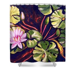 Pink Lotus Flower Shower Curtain