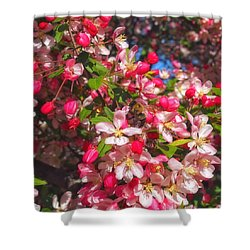 Pink Magnolia 2 Shower Curtain by Joann Vitali