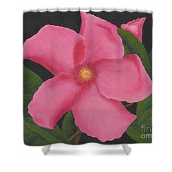 Pink Mandevilla Shower Curtain