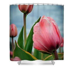 Shower Curtain featuring the photograph Pink Passion by Athena Mckinzie