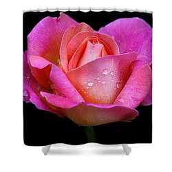 Shower Curtain featuring the photograph Pink Pearl by Doug Norkum