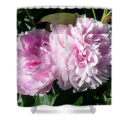 Pink Peonies 3 Shower Curtain by HEVi FineArt