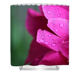 Shower Curtain featuring the photograph Pink Peony  by Ann E Robson