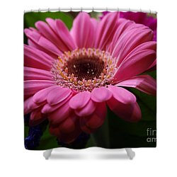 Pink Petal Explosion Shower Curtain