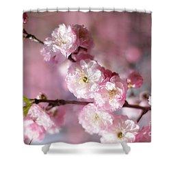 Pink Plum Branch 1 Shower Curtain