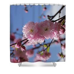 Pink Plum On Sky 2 Shower Curtain