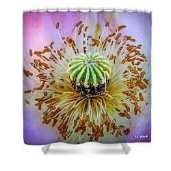 Pink Poppy Squared Shower Curtain by TK Goforth
