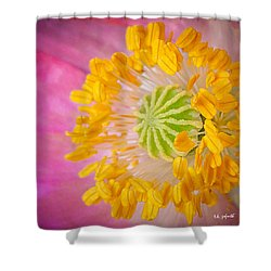 Pink Poppy Too Squared Shower Curtain