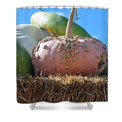 Pink Pumpkin And Friends Shower Curtain