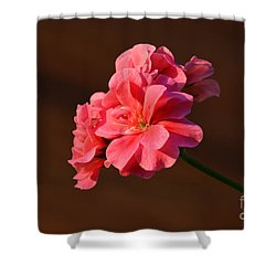 Shower Curtain featuring the photograph Pink by Ramona Matei