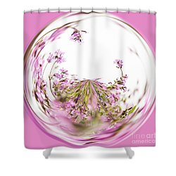 Pink Red Campion Shower Curtain by Anne Gilbert