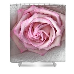 Pink Rose And Linen Shower Curtain by Sandra Foster