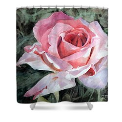 Pink Rose Greg Shower Curtain by Greta Corens