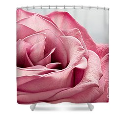 Pink Rose Macro Shower Curtain