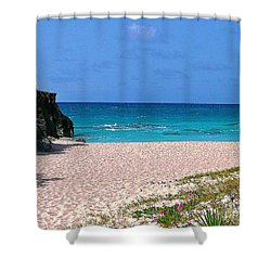 Shower Curtain featuring the photograph Pink Sand And Flowers by Judy Palkimas