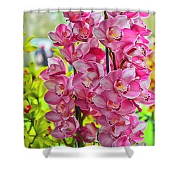 Pink Shadows Shower Curtain