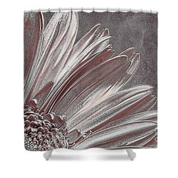 Pink Silver Shower Curtain by Lois Bryan