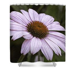 Pink Summers Shower Curtain