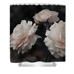 Pink Trio Shower Curtain by Michelle Joseph-Long