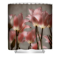 Pink Tulips Glow Shower Curtain by Michelle Joseph-Long