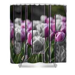 Pink Tulips Shower Curtain by Trish Tritz