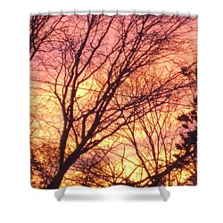 Pink Twilight Shower Curtain