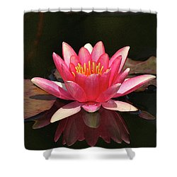 Pink Waterlily Shower Curtain by Art Block Collections