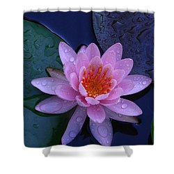 Shower Curtain featuring the photograph Pink Waterlily by Raymond Salani III