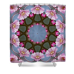Pink Weeping Cherry Blossom Kaleidoscope Shower Curtain by Kathy Clark