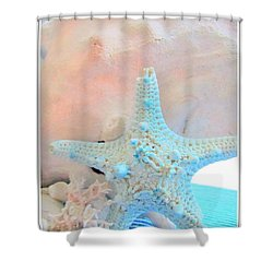Pink White And Blue Conch And Sea Shells  Shower Curtain by Danielle  Parent