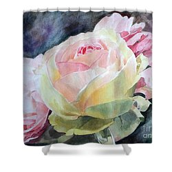 Pink Yellow Rose Angela Shower Curtain by Greta Corens