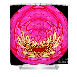 Shower Curtain featuring the photograph Pink Zinnia Polar Coordinate 2 by Rose Santuci-Sofranko