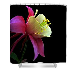 Pinkish Shower Curtain by Doug Norkum