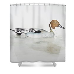 Pintail Duck Shower Curtain by Ele Grafton