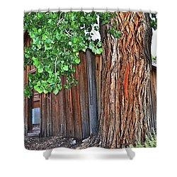 Pioneer Cabin Shower Curtain