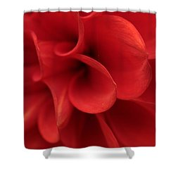 Scarlet Pipes Shower Curtain