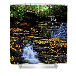 Pipestem Beauty Shower Curtain