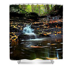 Pipestem Falls Shower Curtain