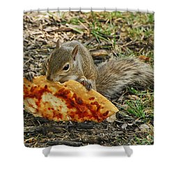 Pizza For  Lunch Shower Curtain by Mary Carol Story