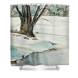 Placid Winter Morning Shower Curtain by Mary Benke