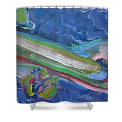 Plane Colorful Shower Curtain